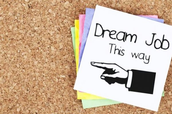 Learn About Your Dream Jobs